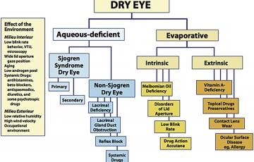 Eye drops for Dry Eyes - Prof. Harminder Dua